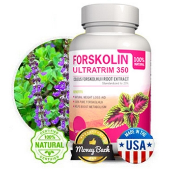 ultra trim 350 forskolin