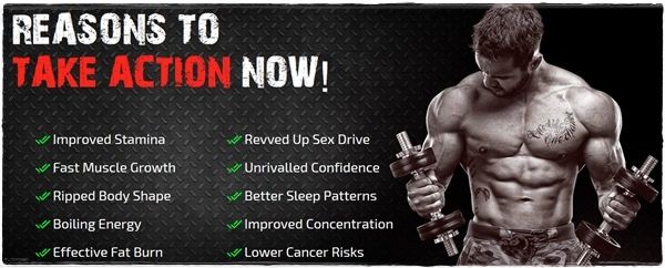testoboost pro ingredients